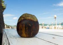 Palma di Palmira dell'asiatico, palma di Toddy, palma da zucchero Immagine Stock