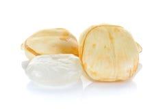 Palma di Palmira dell'asiatico, palma di Toddy, palma da zucchero isolata sul BAC bianco Fotografia Stock