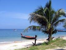 Palma e barca su una spiaggia Fotografia Stock