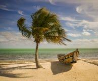 Palma e barco Imagens de Stock Royalty Free