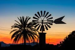 Palma e del mulino a vento sulla campagna in Mallorca al tramonto Immagine Stock