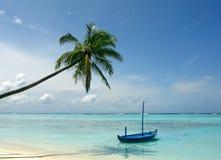 Palma e della barca alla spiaggia Fotografia Stock Libera da Diritti