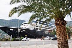 Palma e o navio Imagem de Stock