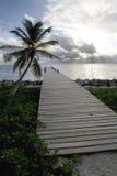 Palma e pilastro ad alba Fotografie Stock