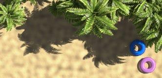 Palma e spiaggia tropicale con l'anello di galleggiamento da sopra, rappresentazione 3d Immagine Stock