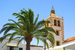 Palma ed il campanile Fotografie Stock