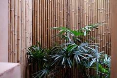 Palma ed interno della spiaggia del bambù fotografia stock