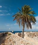 Palma en castillo medieval en el puerto viejo en Kyrenia, Chipre Foto de archivo libre de regalías