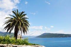 Palma en la bahía Imagen de archivo libre de regalías