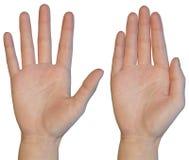 Palma femenina de la mano imagen de archivo