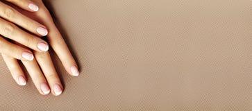 Palma femenina joven Manicura hermosa del encanto Estilo francés Pulimento de clavo Cuide sobre las manos y los clavos, piel limp fotografía de archivo libre de regalías