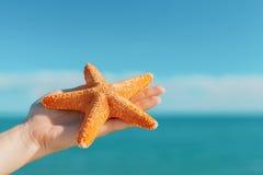 Palma femenina que sostiene estrellas de mar delante del cielo azul y del mar Imágenes de archivo libres de regalías