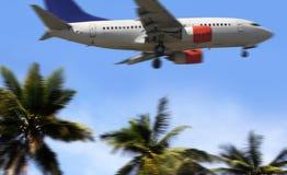 Palma i samolot Obrazy Stock