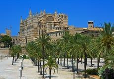 Palma Kathedrale mit Palmen, Majorca Lizenzfreie Stockfotos