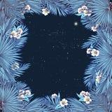 Palma kwiatów i liści kwadrata rama Zdjęcia Stock