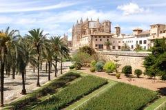 Free Palma - La Seu Royalty Free Stock Photography - 9102317