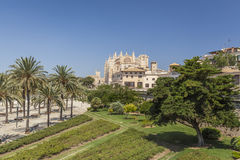 Palma Mallorca, Balearic Island, Espanha Fotografia de Stock