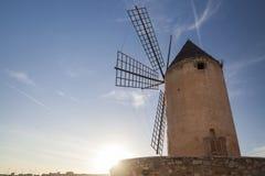 Palma Mallorca,Balearic Islands,Spain. royalty free stock image
