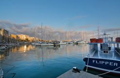 Palma marina boats moored Royalty Free Stock Images