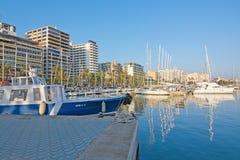 Palma marina Royalty Free Stock Photo