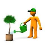 Palma molhando do jardineiro Fotografia de Stock