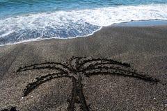 Palma na piasku Obrazy Royalty Free