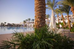 Palma - odpoczynek - basen - weekend fotografia stock