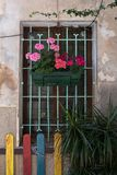 Palma Old Town-Sonderkommando Stockfotos