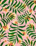 Palma opuszcza bezszwowych wzoru i plumeria kwiaty ilustracji
