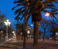 Palma park Fotografia Royalty Free