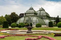 Palma Pavillon al palazzo Schoenbrunn, Vienna fotografia stock libera da diritti