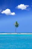 Palma sola nel mezzo dell'oceano sul backgro Immagini Stock Libere da Diritti