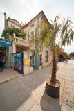 Palma on the street Burgas in Bulgaria Stock Images