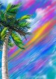 Palma su priorità bassa luminosa Fotografie Stock Libere da Diritti