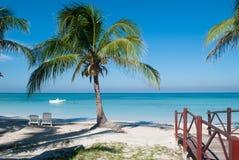Palma sulla spiaggia di Cayo Jutias in Cuba La barca ed il mare blu hanno Fotografia Stock Libera da Diritti