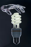 Palma trasparente & lampada moderna Immagine Stock Libera da Diritti