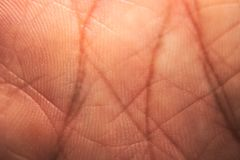 Palma umana fotografia stock libera da diritti