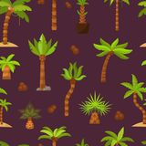 Palma vector palmaceous tropical tree with coconut or green exotic leafs and palmetto on tropic beach illustration palmy Stock Images