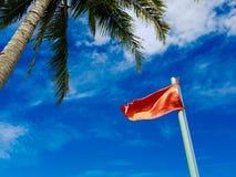 Palma verde, bandiera rossa, cielo blu Immagine Stock Libera da Diritti