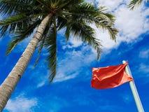 Palma verde, bandiera rossa, cielo blu Fotografie Stock
