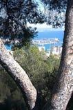 Palma view with Trasmediterranea ferry Tenacia Royalty Free Stock Image