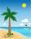 palma wyspy Obraz Stock