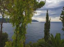 Palma y árboles tropicales verdes de la vegetación con la opinión sobre la bahía de Paleokastritsa, cielo nublado del verano, Cor fotografía de archivo libre de regalías