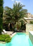 Palma y piscina Fotografía de archivo libre de regalías