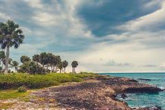 Palma y playa tropical en paraíso tropical. Verano holyday en la República Dominicana, Seychelles, el Caribe, Filipinas, Bahama Fotografía de archivo