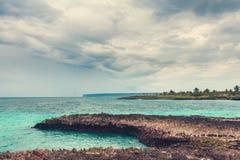 Palma y playa tropical en paraíso tropical. Verano holyday en la República Dominicana, Seychelles, el Caribe, Filipinas, Bahama Fotografía de archivo libre de regalías