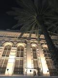 Palma y Windows fotos de archivo
