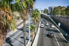 Palma zasadza wzdłuż dróg południe Hiszpański miasto Zdjęcia Stock
