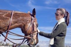 Palmadita del caballo Imagen de archivo libre de regalías