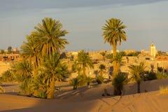 Palmas al borde del pueblo de Merzouga Fotografía de archivo libre de regalías